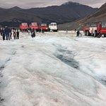 Photo de Columbia Ice Field