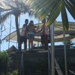 """Free onsite """"learn Trapeze"""" lessons"""