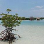 Pantai Pasir Perawan, Pulau Pari