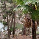 cataract Gorge