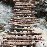 A bridge made of Bhoj logs to cross a fast stream