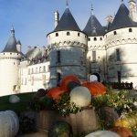 le château devant des curcubitacées