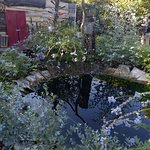 le jardin des sorcieres