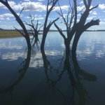 Foto de Lake Hume Tourist Park