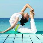 Photo de Sivananda Ashram Yoga Retreat