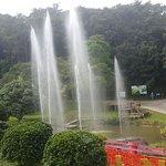 Φωτογραφία: Queen Sirikit Botanic Garden