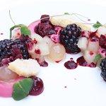 hibiscus, blackberry