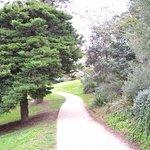 Foto de Manly Scenic Walkway