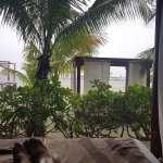 View from daybed on a rainy day