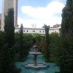 Petit jardin , un bleu relaxant et une fontaine au milieu