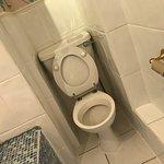 Grubby Toilet