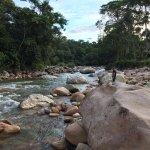 Photo de Hakuna Matata Amazon Lodge