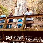 Foto van Mingo Falls