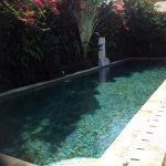 Bilde fra The Zen Villas