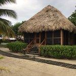 Turtle Inn Photo