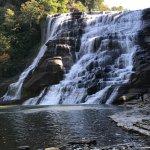Foto de Ithaca Falls Natural Area