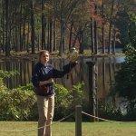 Calloway Gardens' WILD BIRDS OF PREY SHOW