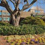 Photo of Radisson Hotel Washington D.C. - Rockville