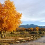 beautiful fall colors and walking paths through nature