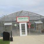 Greenhouse, Tabasco Visitor Center, Avery Island, LA