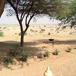 Foto de Dera Dune Retreat
