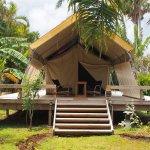 Ikurangi Eco Retreat Photo