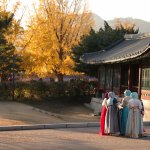 Photo of The National Folk Museum of Korea