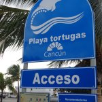 Photo of Playa Tortugas