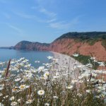 Visit the beautiful regency town of Sidmouth