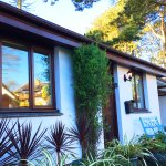 Front of Midwood Cottage - private parking, garden, bike shed and tree house