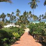Dream of Zanzibar Foto