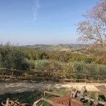 Photo of Quercia al Poggio
