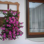 Photo of Hotel Garni Ladinia