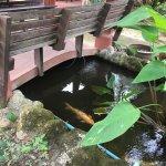 Foto de Floraville Phuket Resort