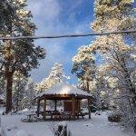 Mormon Lake Lodge and Campground Foto