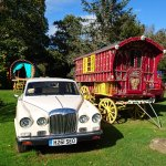 Just some of the old cars & caravans dotted around
