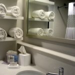 Bathroom, , Hampton Inn Convention Center, New Orleans, LA
