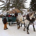 Horse drawn Wagon Rides