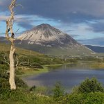 Errigal mountain on our doorstep