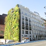 Quirky living wall on side of hotel building