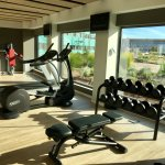 Gym overlooking the pool and gardens