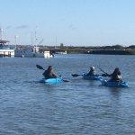 Sea Kayaking in Tollesbury (Liar / Essex)