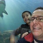 Adventure Aquarium Bild