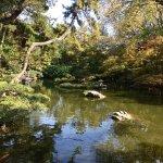 صورة فوتوغرافية لـ Fort Worth Botanic Garden