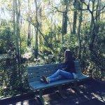 Perching on a bench in the Louisiana Bayou.