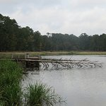 Photo of Ratcliff Lake