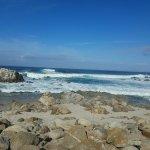 Monterey Peninsula Recreational Trail Foto