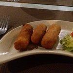 Chicken Croquets