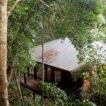 Reef Bungalow set in Rainforest