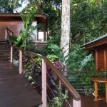 Two private bungalows with rainforest views